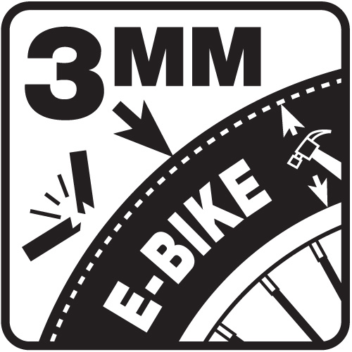 Pictogram E-Bike